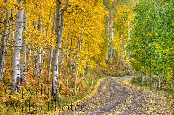 Wallin Photos Portfolio Owl Creek Pass Colorado